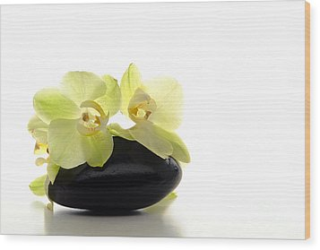 Orchid Flowers On Polished Stone Wood Print by Olivier Le Queinec