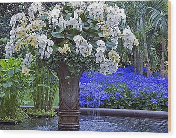 Orchid Fountain Wood Print by Jennifer Nelson