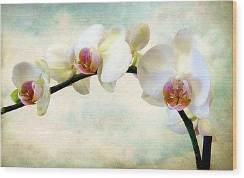 Orchid Heaven Wood Print
