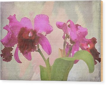 Orchid In Hot Pink Wood Print