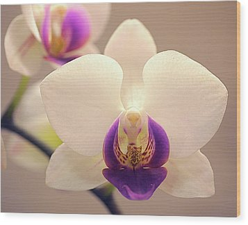 Orchid Wood Print by Rona Black