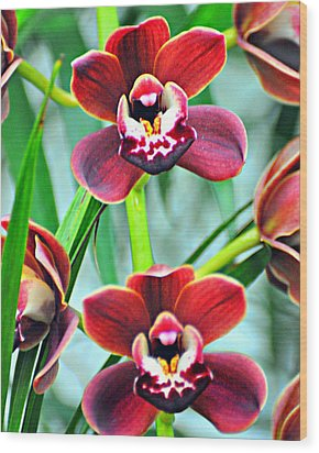 Orchid Rusty Wood Print by Marty Koch
