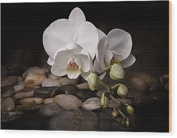 Orchid - Sensuous Virtue Wood Print