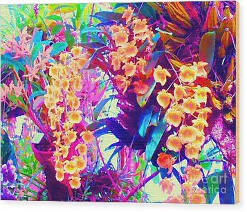 Orchid Splash Wood Print by Ann Johndro-Collins