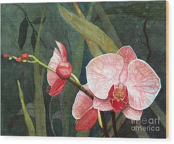 Orchid Trio 2 Wood Print by Barbara Jewell
