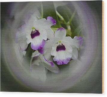 Orchid Wine Swirl Wood Print by Penny Lisowski