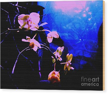 Wood Print featuring the photograph Orchidia by Vanessa Palomino