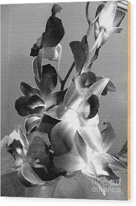 Orchids 2 Bw Wood Print