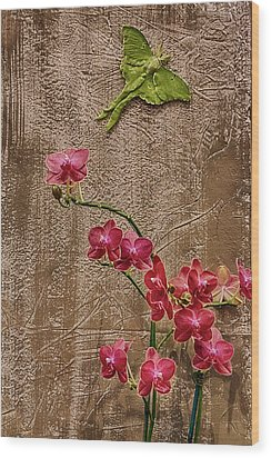 Orchids And Butterfly Wood Print by John Haldane