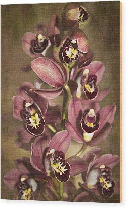 Wood Print featuring the photograph Orchids - Cymbidium  by Kerri Ligatich