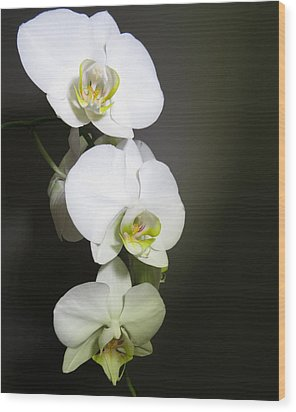 Orchids On Gray Wood Print