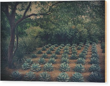 Order Wood Print by Laurie Search