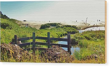 Oregon Beach 1 Wood Print