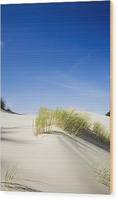 Oregon Dunes Wood Print by Charmian Vistaunet