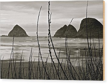 Oregon Seascape Wood Print by Milton Thompson