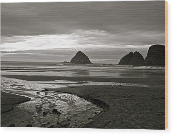 Oregon Seashore Wood Print by Milton Thompson