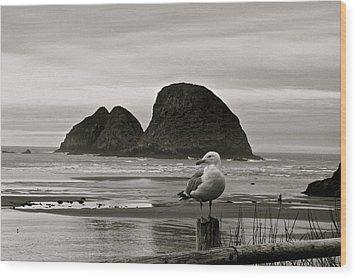 Wood Print featuring the digital art Oregon Shorebirds by Milton Thompson