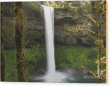 Oregon Waterfall Woodland Wood Print by Andrea Hazel Ihlefeld