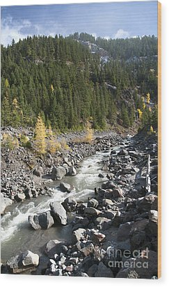 Oregon Wilderness II Wood Print by Peter French