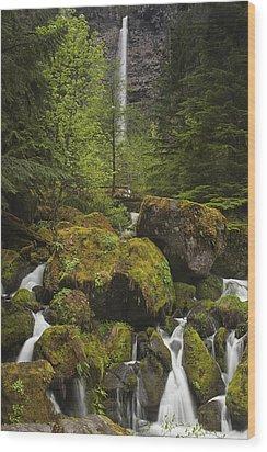 Oregon's Watson Falls Wood Print by Andrew Soundarajan