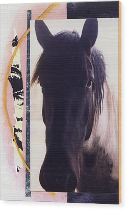 Wood Print featuring the photograph Oreo by Mary Ann  Leitch