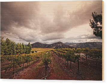 Wood Print featuring the photograph Orfila by Ryan Weddle