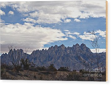 Organ Mountain Landscape Wood Print by Barbara Chichester