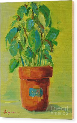 Organic Basil Plant Still Life Wood Print by Patricia Awapara