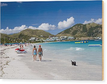Orient Beach In St Martin Fwi Wood Print by David Smith