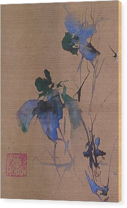 Oriental Blue Louisiana Iris Flower Study  Wood Print by Robin Miller-Bookhout