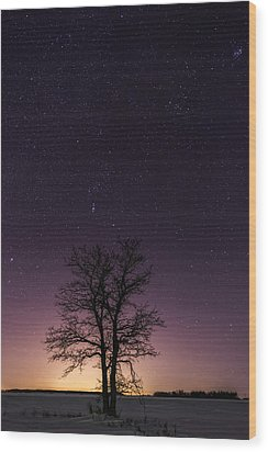 Orion Tree Wood Print
