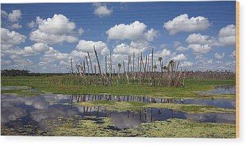 Orlando Wetlands Cloudscape Wood Print by Mike Reid