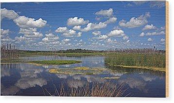 Orlando Wetlands Park Cloudscape 4 Wood Print by Mike Reid