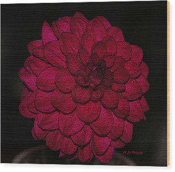 Ornate Red Dahlia Wood Print by Jeanette C Landstrom