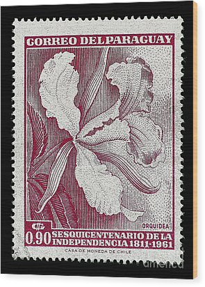Orquidea Wood Print by Andy Prendy