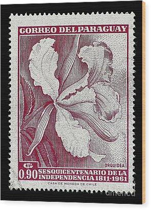 Orquidea Wood Print