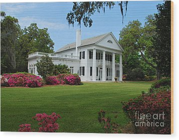 Wood Print featuring the photograph Orton Plantation by Bob Sample