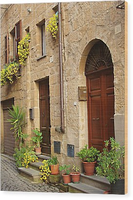 Orvieto Homes Wood Print by Ellen Henneke