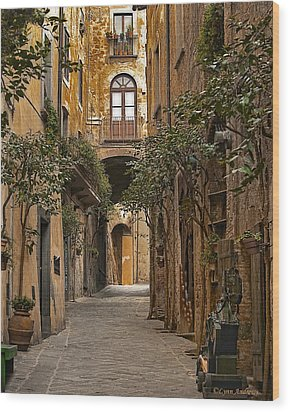 Orvieto Side Street Wood Print by Lynn Andrews