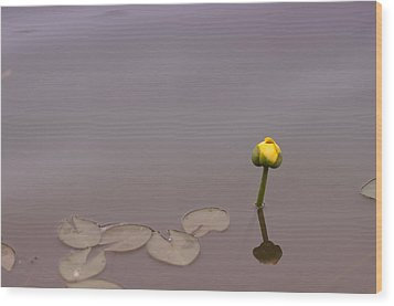 Wood Print featuring the photograph Osaka Garden Tranquility by Miguel Winterpacht