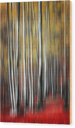 Wood Print featuring the photograph Osmosis by Philippe Sainte-Laudy
