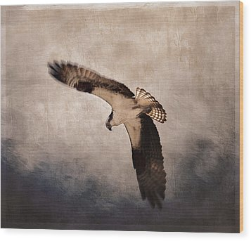 Osprey Over The Columbia River Wood Print by Carol Leigh