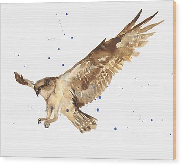 Osprey Painting Wood Print by Alison Fennell
