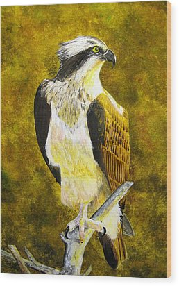 Wood Print featuring the painting Osprey Profile by Stan Tenney