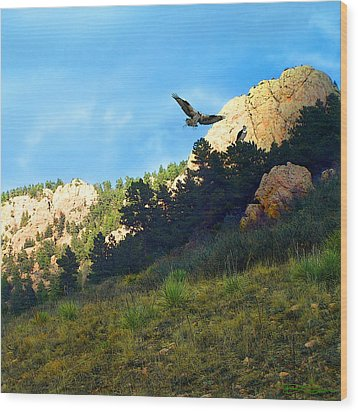 Osprey Wood Print by Ric Soulen
