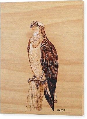 Osprey Wood Print by Ron Haist