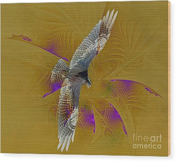 Osprey Wild Wood Print by Deborah Benoit