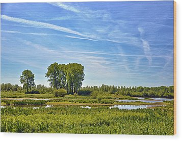 Ossenwaard Near Deventer Wood Print