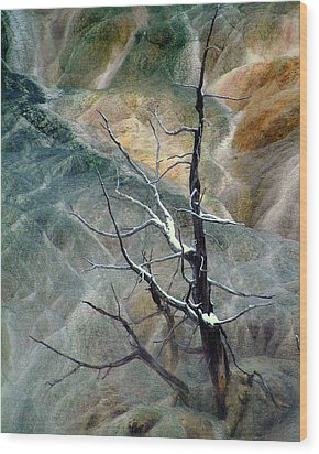 Other Worlds.. Wood Print by Al  Swasey