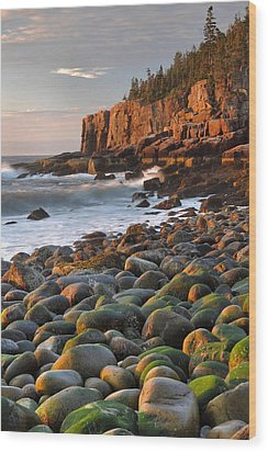 Otter Cliffs At Sunrise Wood Print by Stephen  Vecchiotti